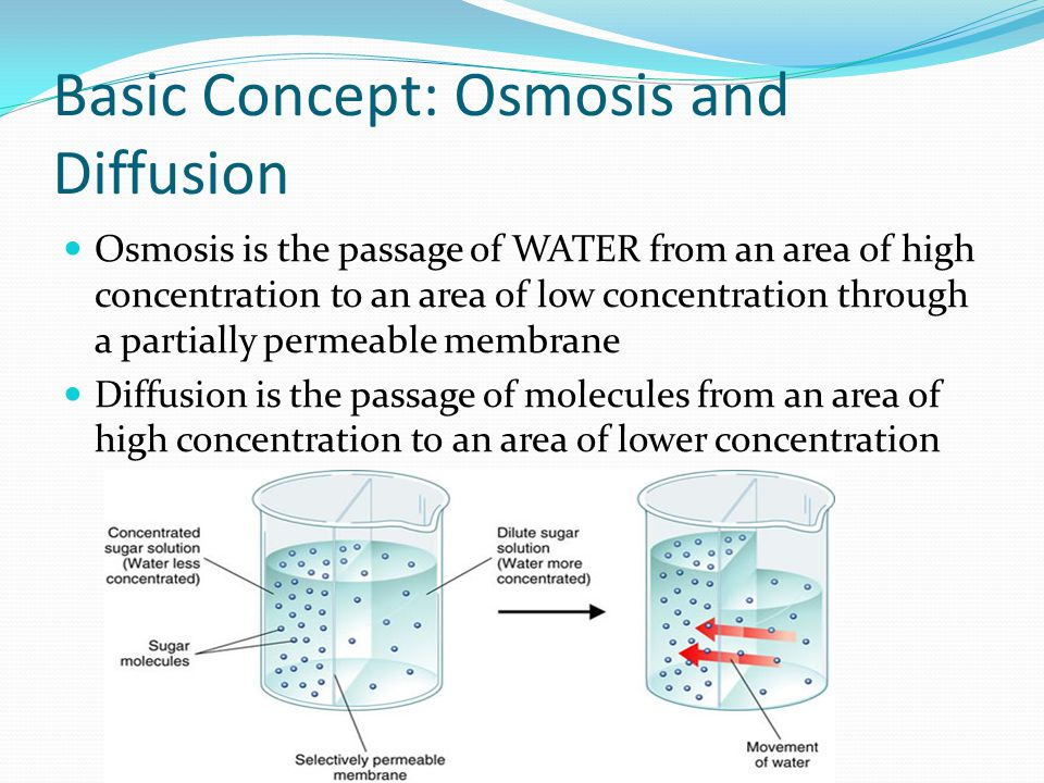 Osmosis is the passage of WATER from an area of high concentration to an area of low concentration through a partially permeable membrane Diffusion is the passage of molecules from an area of high concentration to an area of lower concentration