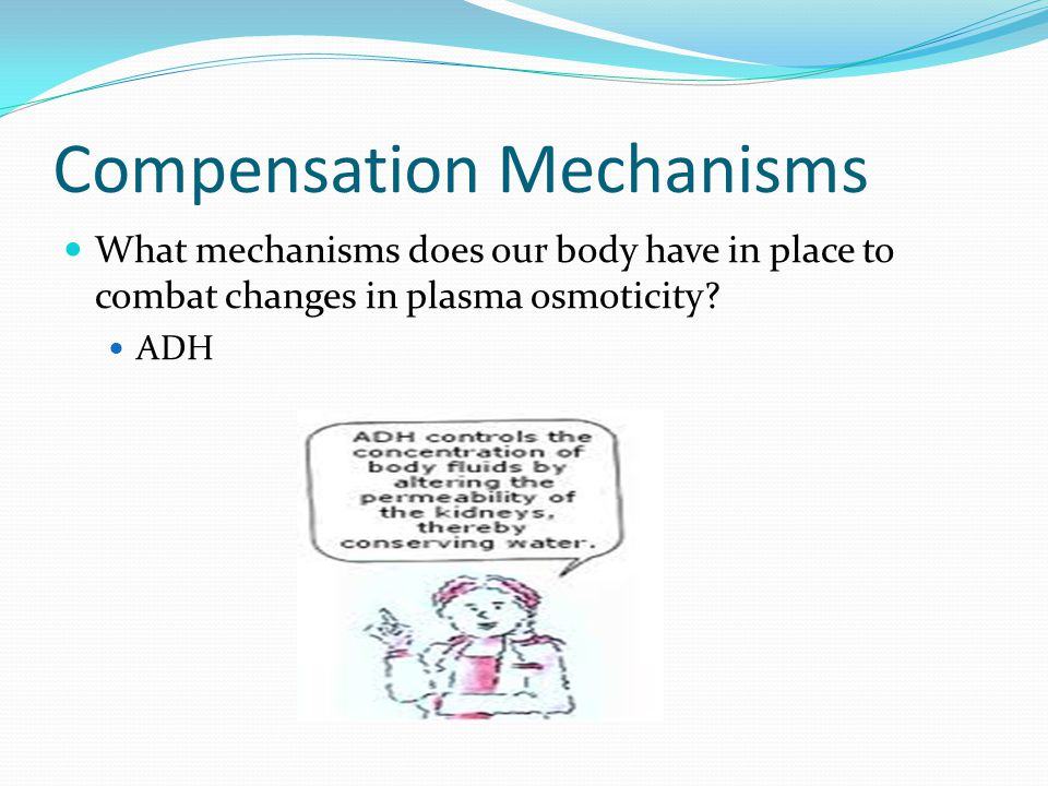 Compensation Mechanisms What mechanisms does our body have in place to combat changes in plasma osmoticity.