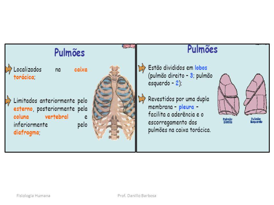 Fisiologia HumanaProf. Danillo Barbosa