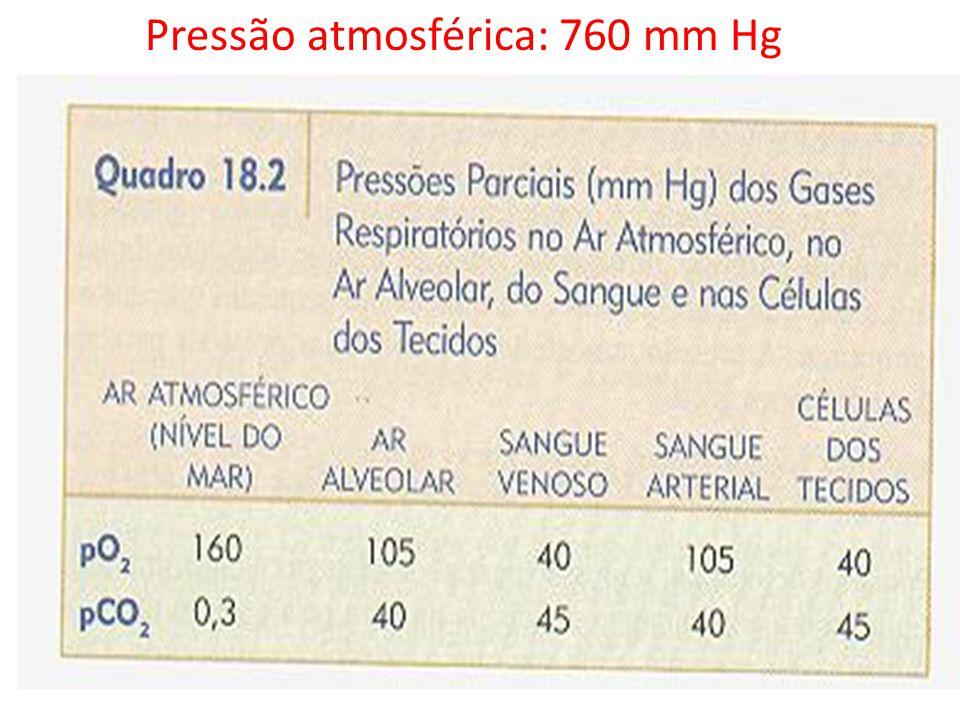 Pressão atmosférica: 760 mm Hg