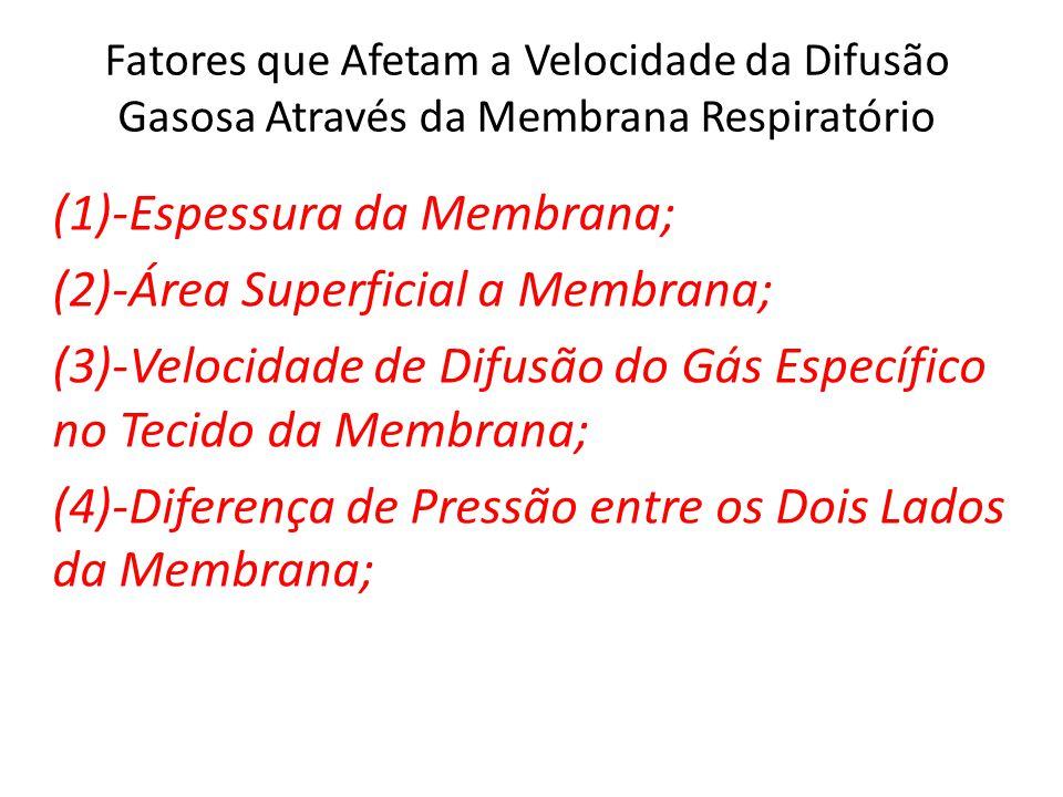 Fatores que Afetam a Velocidade da Difusão Gasosa Através da Membrana Respiratório (1)-Espessura da Membrana; (2)-Área Superficial a Membrana; (3)-Velocidade de Difusão do Gás Específico no Tecido da Membrana; (4)-Diferença de Pressão entre os Dois Lados da Membrana;