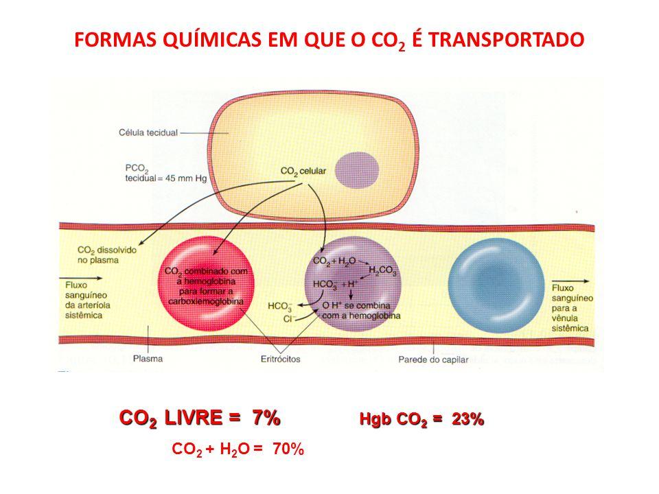 FORMAS QUÍMICAS EM QUE O CO 2 É TRANSPORTADO CO 2 LIVRE = 7% Hgb CO 2 = 23% CO 2 LIVRE = 7% Hgb CO 2 = 23% CO 2 + H 2 O = 70% CO 2 + H 2 O = 70%