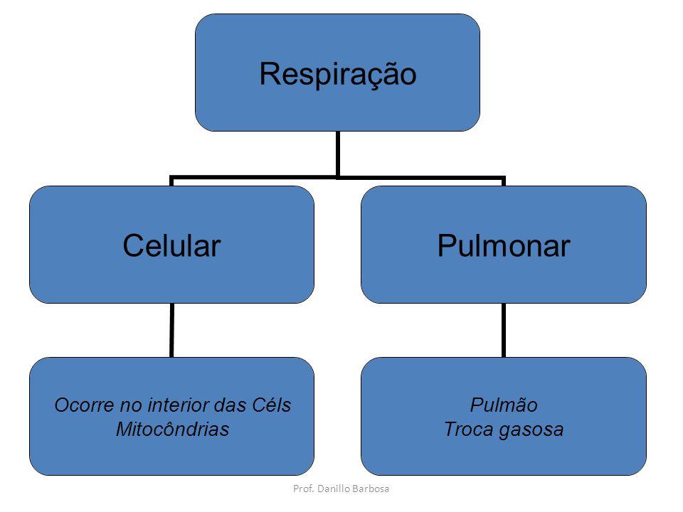 Respiração Celular Ocorre no interior das Céls Mitocôndrias Pulmonar Pulmão Troca gasosa Prof.
