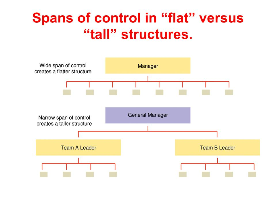 Spans of control in flat versus tall structures.