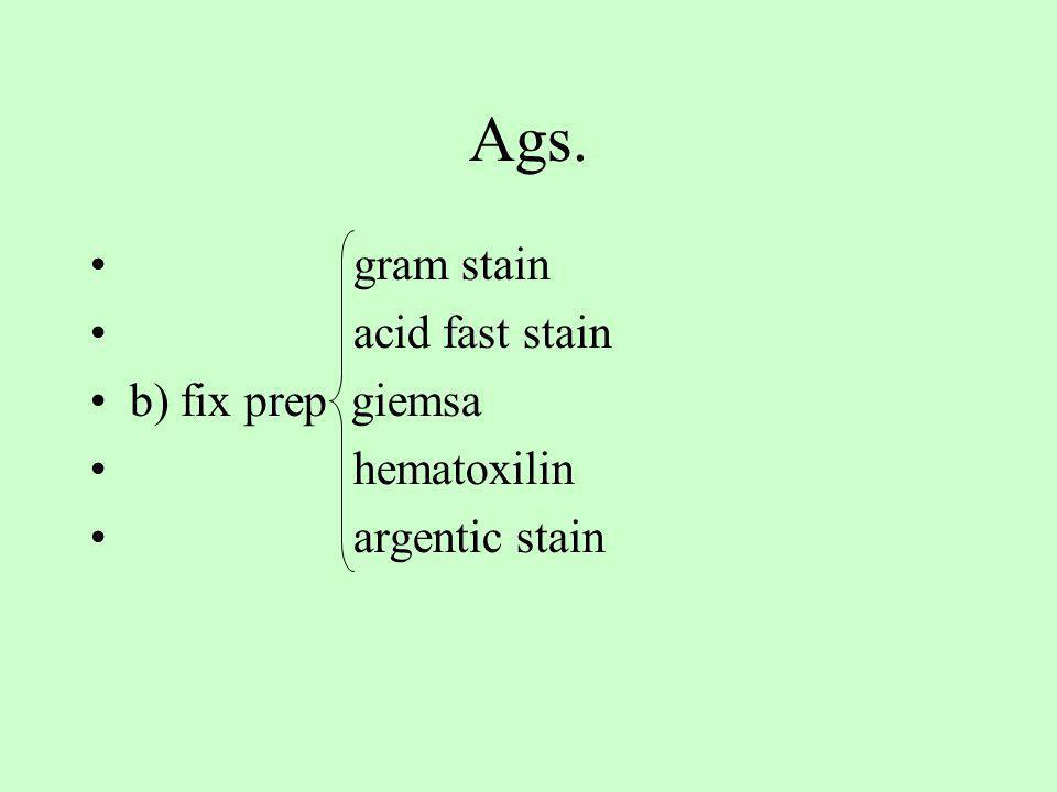 Ags. gram stain acid fast stain b) fix prep giemsa hematoxilin argentic stain