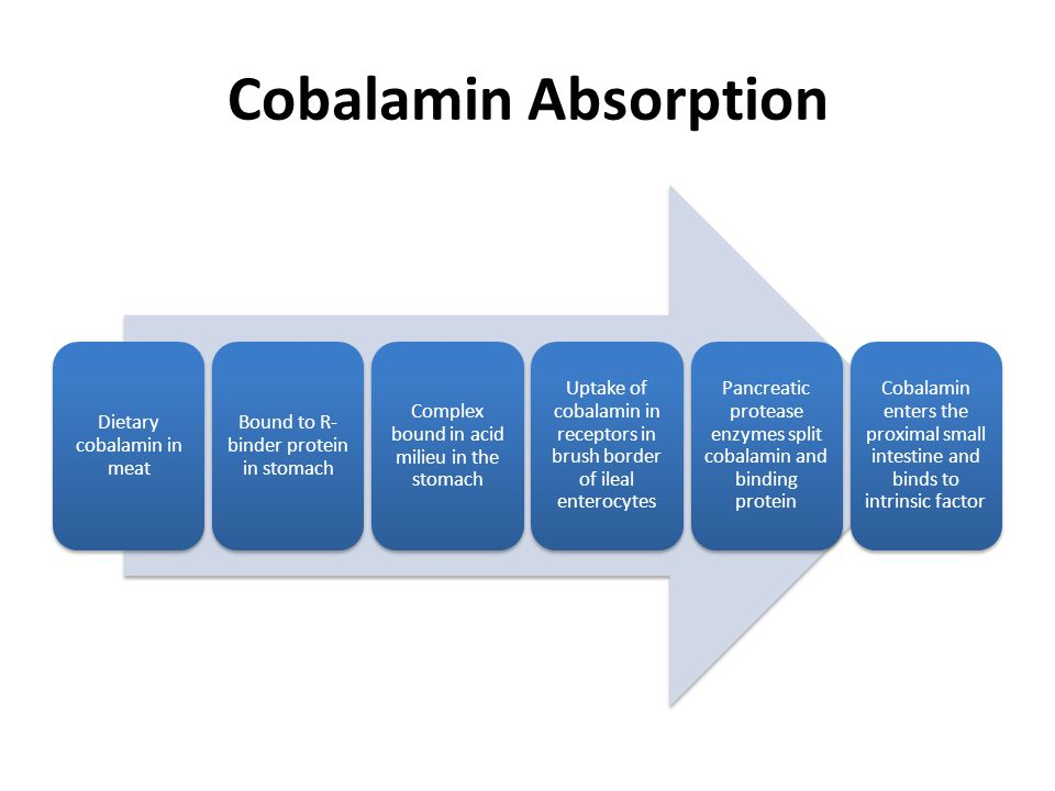 Cobalamin Absorption Dietary cobalamin in meat Bound to R- binder protein in stomach Complex bound in acid milieu in the stomach Uptake of cobalamin i