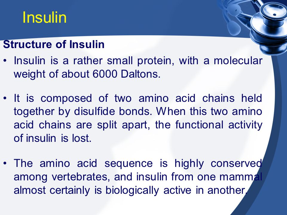 Structure of Insulin Insulin is a rather small protein, with a molecular weight of about 6000 Daltons. It is composed of two amino acid chains held to