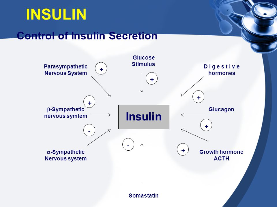 Control of Insulin Secretion INSULIN Parasympathetic Nervous System Glucose Stimulus D i g e s t i v e hormones  -Sympathetic nervous symtem  -Sympa