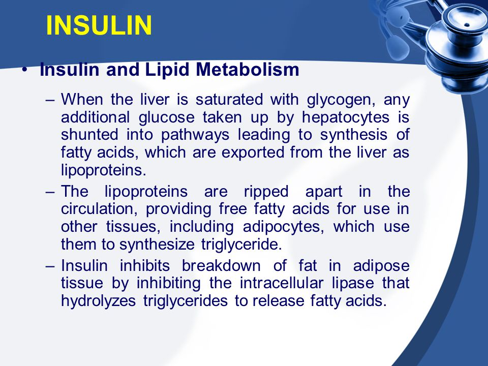 Insulin and Lipid Metabolism –When the liver is saturated with glycogen, any additional glucose taken up by hepatocytes is shunted into pathways leadi