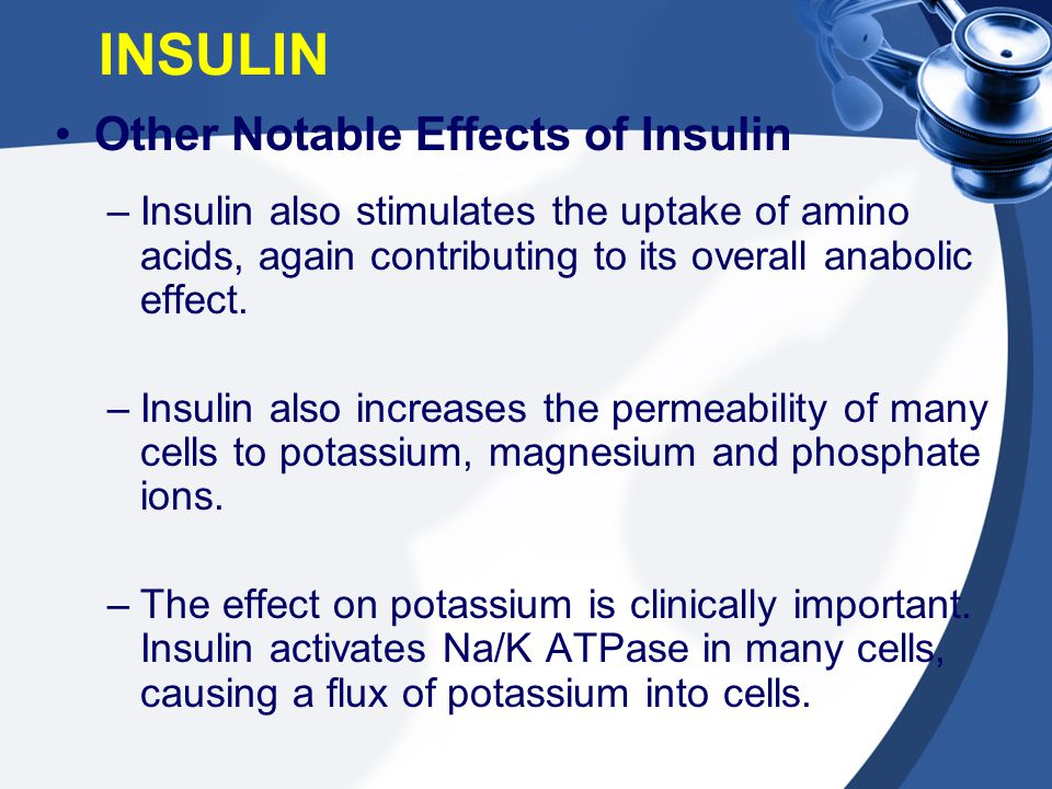 Other Notable Effects of Insulin –Insulin also stimulates the uptake of amino acids, again contributing to its overall anabolic effect. –Insulin also