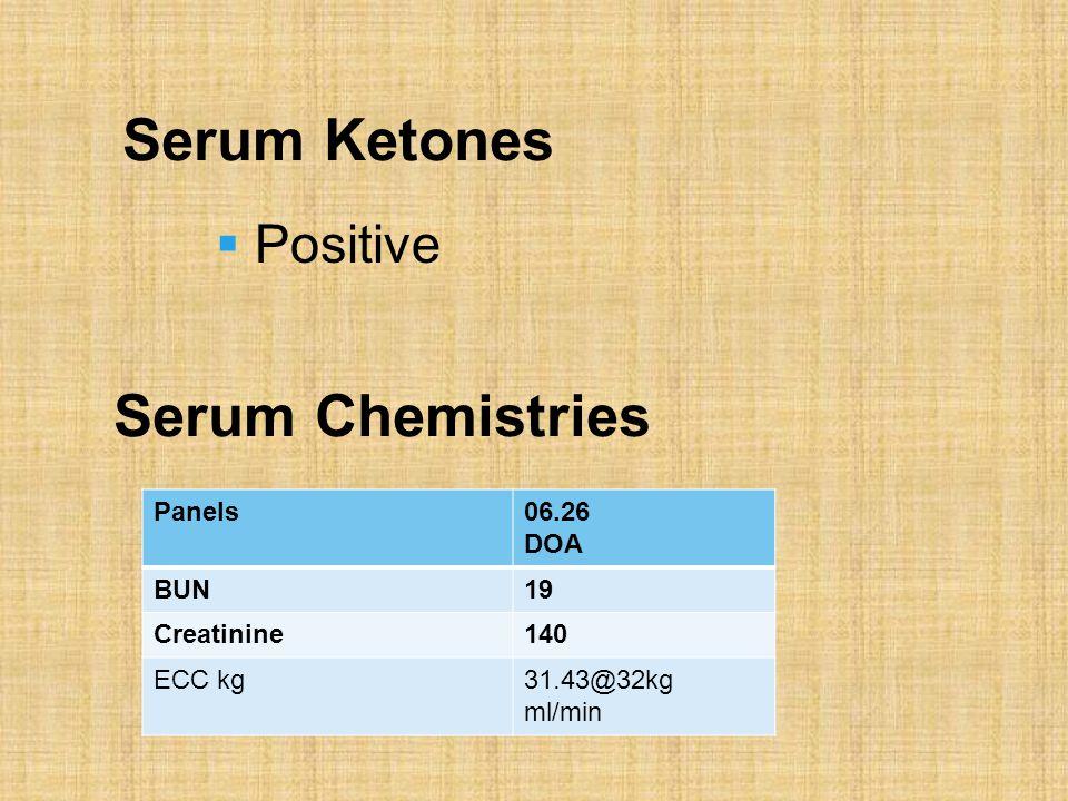 Serum Ketones Panels06.26 DOA BUN19 Creatinine140 ECC kg31.43@32kg ml/min Serum Chemistries  Positive