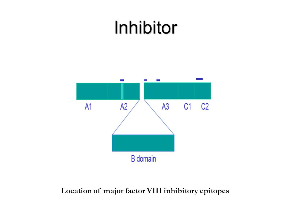 Inhibitor Location of major factor VIII inhibitory epitopes