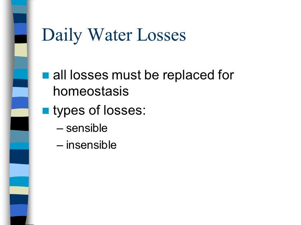 Daily Water Losses all losses must be replaced for homeostasis types of losses: –sensible –insensible