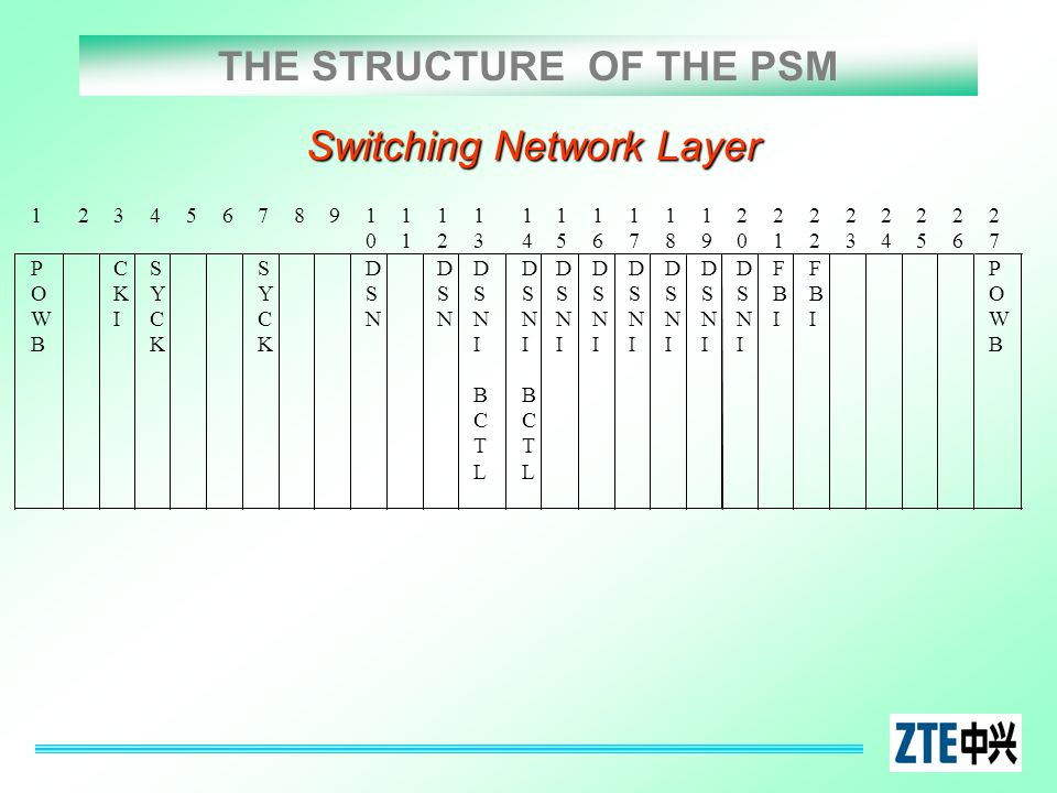 THE STRUCTURE OF THE PSM Switching Network Layer