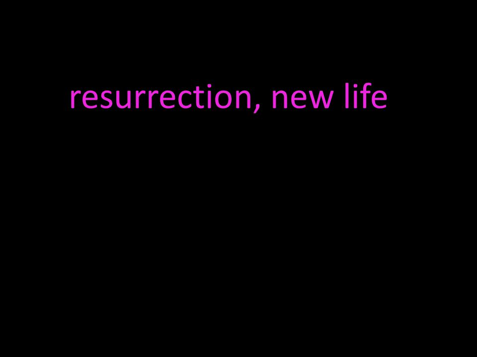 resurrection, new life