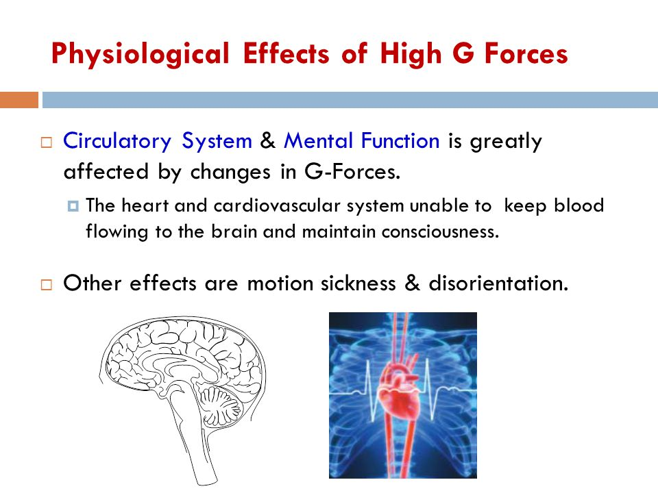 Physiological Effects of High G Forces  Circulatory System & Mental Function is greatly affected by changes in G-Forces.  The heart and cardiovascul