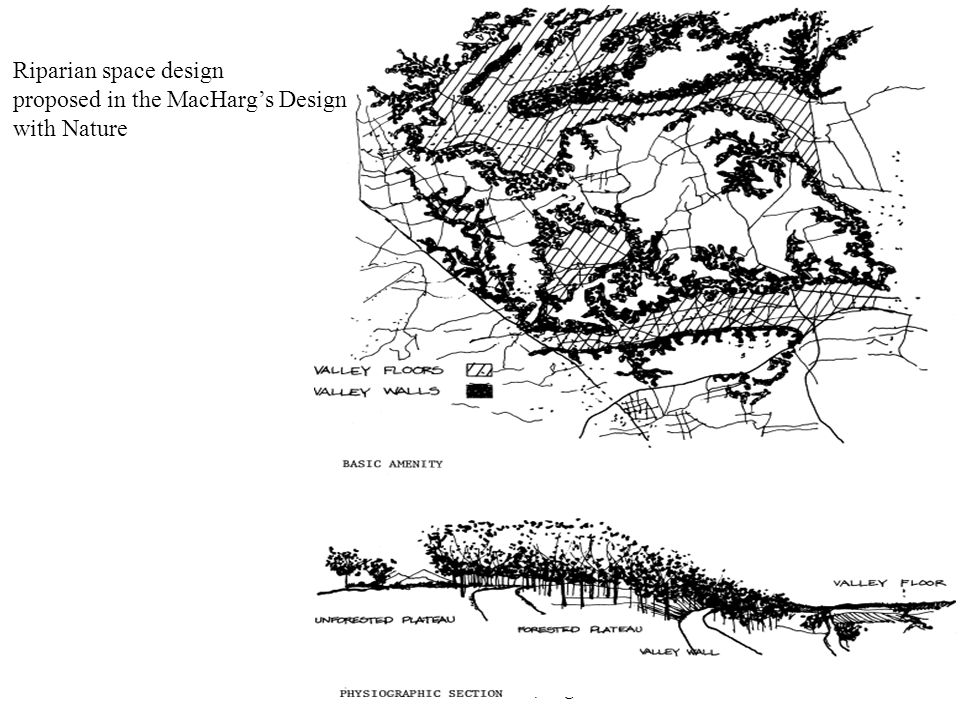 Yoritaka Tashiro/2010, August22 Riparian space design proposed in the MacHarg's Design with Nature