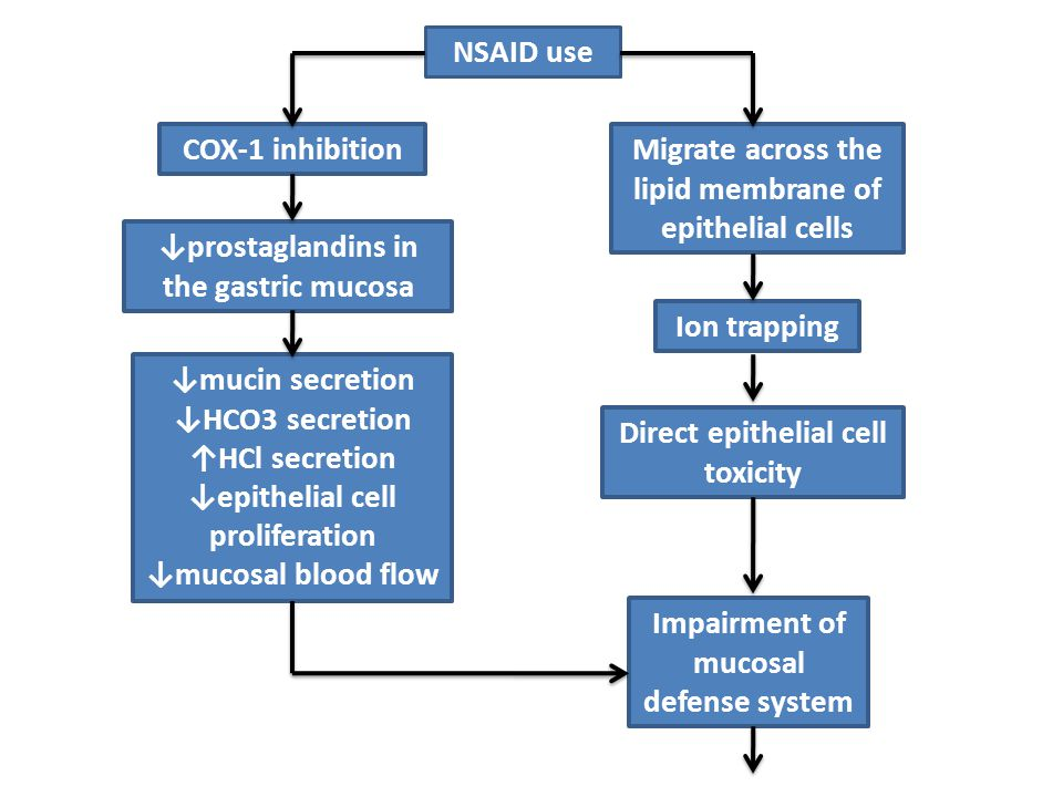 NSAID use COX-1 inhibition ↓prostaglandins in the gastric mucosa ↓mucin secretion ↓HCO3 secretion ↑HCl secretion ↓epithelial cell proliferation ↓mucosal blood flow Migrate across the lipid membrane of epithelial cells Ion trapping Direct epithelial cell toxicity Impairment of mucosal defense system