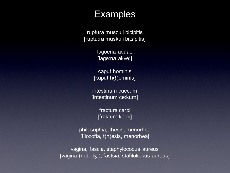 Examples ruptura musculi bicipitis [ruptu:ra muskuli bitsipitis] lagoena aquae [lage:na akve:] caput hominis [kaput h(!)ominis] intestinum caecum [intestinum ce:kum] fractura carpi [fraktura karpi] philosophia, thesis, menorhea [filozofia, t(h)esis, menorhea] vagina, fascia, staphylococus aureus [vagina (not -d ʒ -), fastsia, stafilokokus aureus]