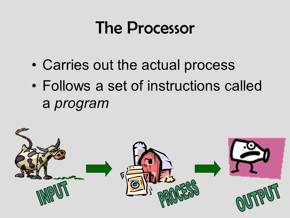 The Processor Carries out the actual process Follows a set of instructions called a program