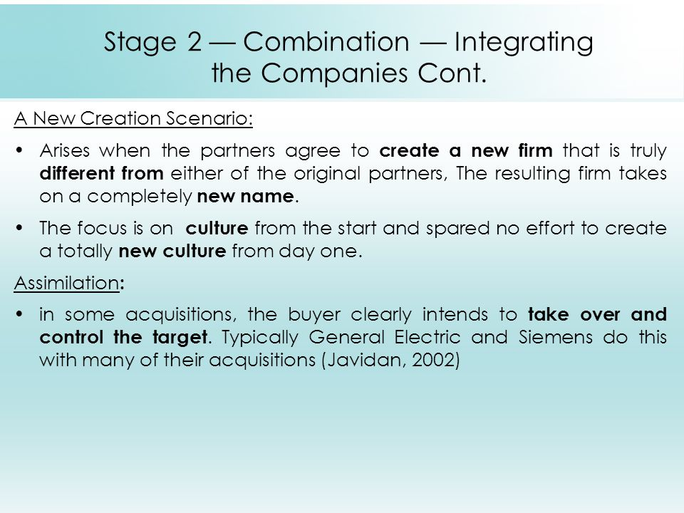 Stage 2 — Combination — Integrating the Companies Cont.