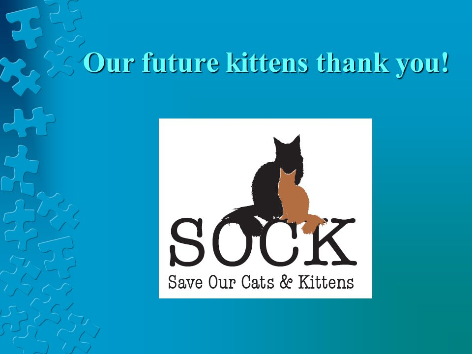 Please join the fight & help us SOCK IT TO FIP
