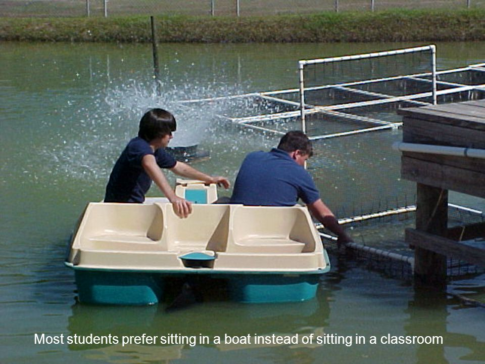 Most students prefer sitting in a boat instead of sitting in a classroom