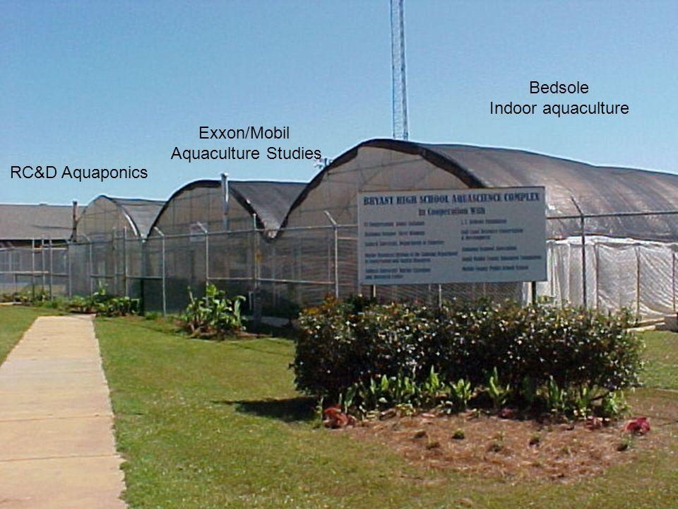 RC&D Aquaponics Exxon/Mobil Aquaculture Studies Bedsole Indoor aquaculture