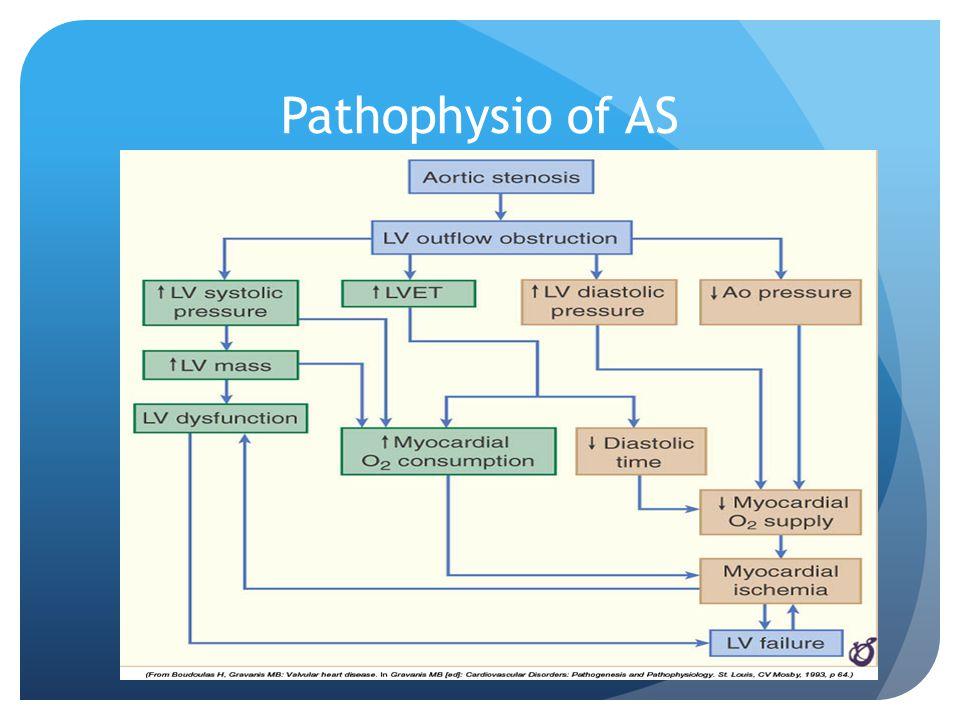 Pathophysio of AS