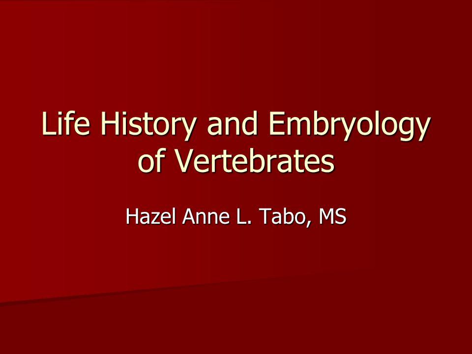 Life History and Embryology of Vertebrates Hazel Anne L. Tabo, MS