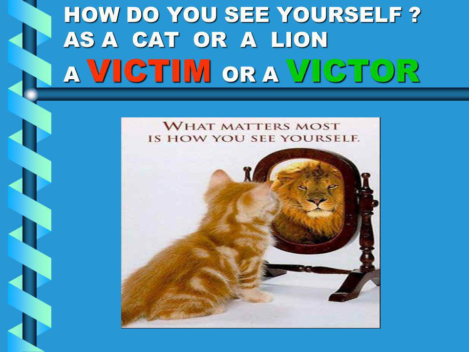 HOW DO YOU SEE YOURSELF ? AS A CAT OR A LION A VICTIM OR A VICTOR