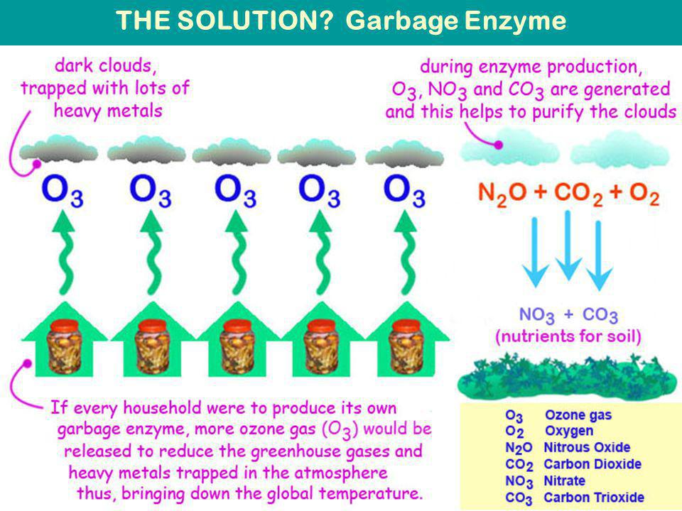 THE SOLUTION Garbage Enzyme