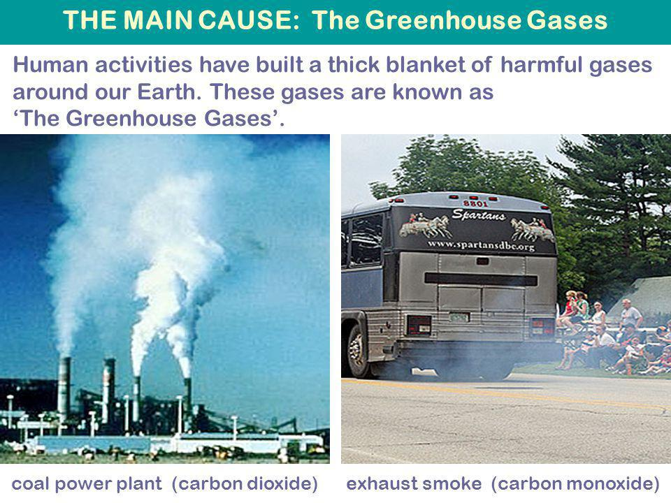 THE MAIN CAUSE: The Greenhouse Gases Human activities have built a thick blanket of harmful gases around our Earth.