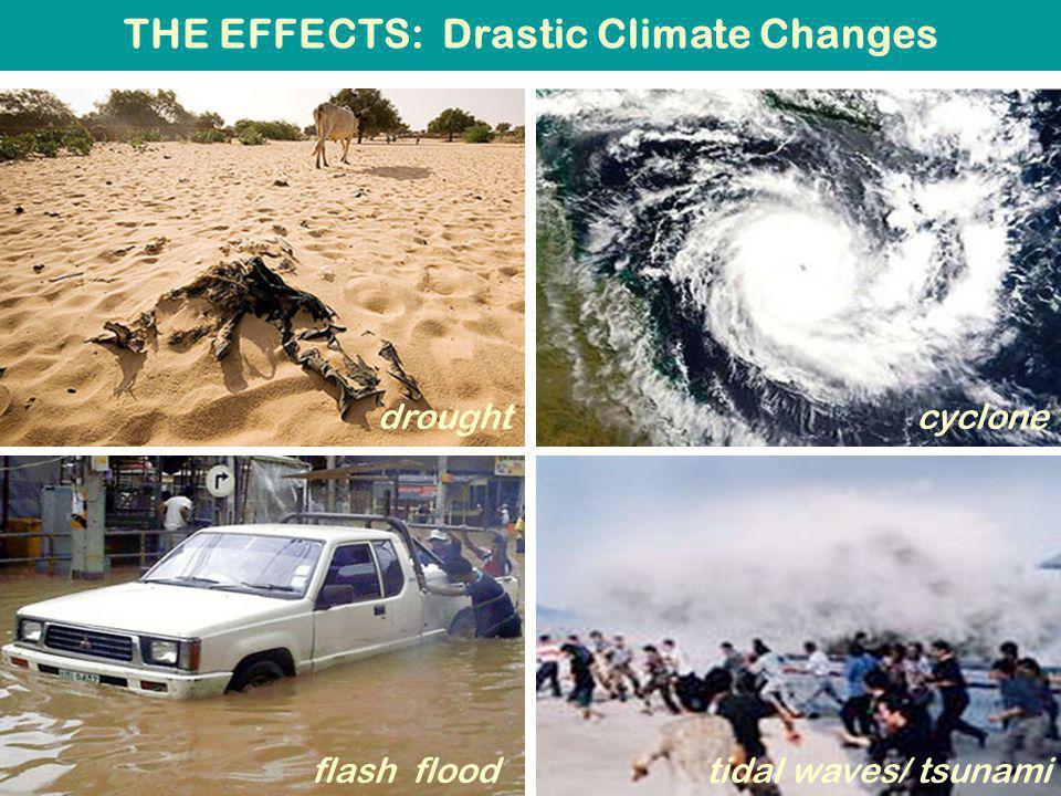 Rising Sea Level 1: Retreating of Glaciers past present
