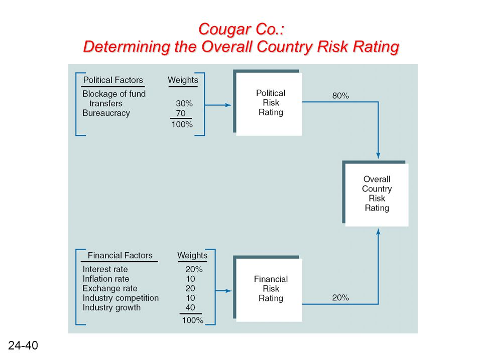 24-40 Cougar Co.: Determining the Overall Country Risk Rating