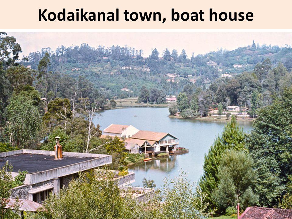 Kodaikanal town, boat house