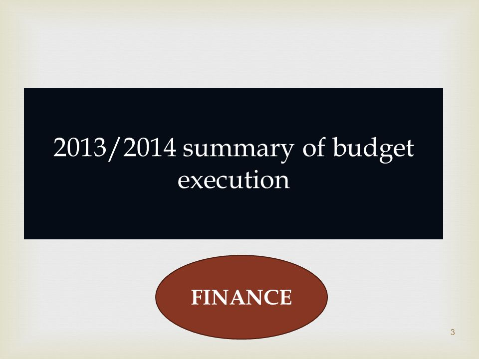  3 2013/2014 summary of budget execution FINANCE