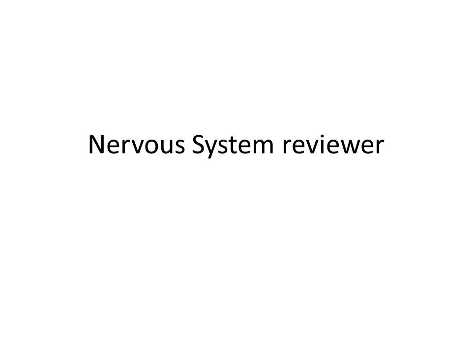 Nervous System reviewer