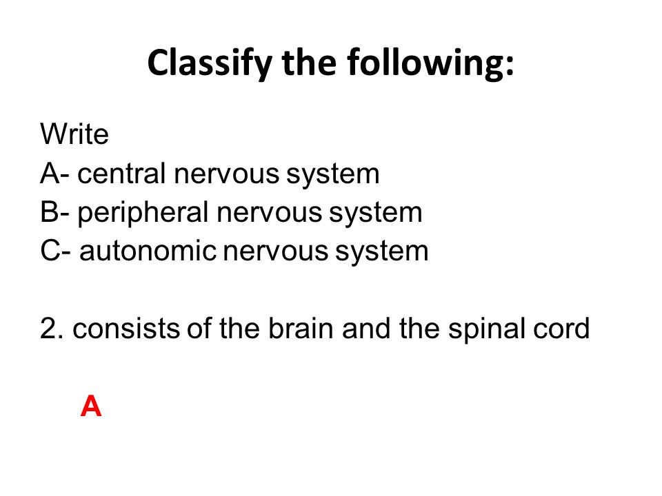 Classify the following: Write A- central nervous system B- peripheral nervous system C- autonomic nervous system 3.controls involuntary activity such as the action of the heart and glands, breathing, digestive processes, and reflex actions C