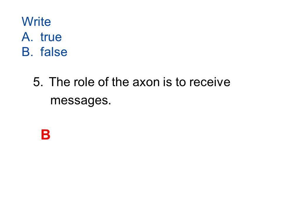 Write A. true B. false 5.The role of the axon is to receive messages. B