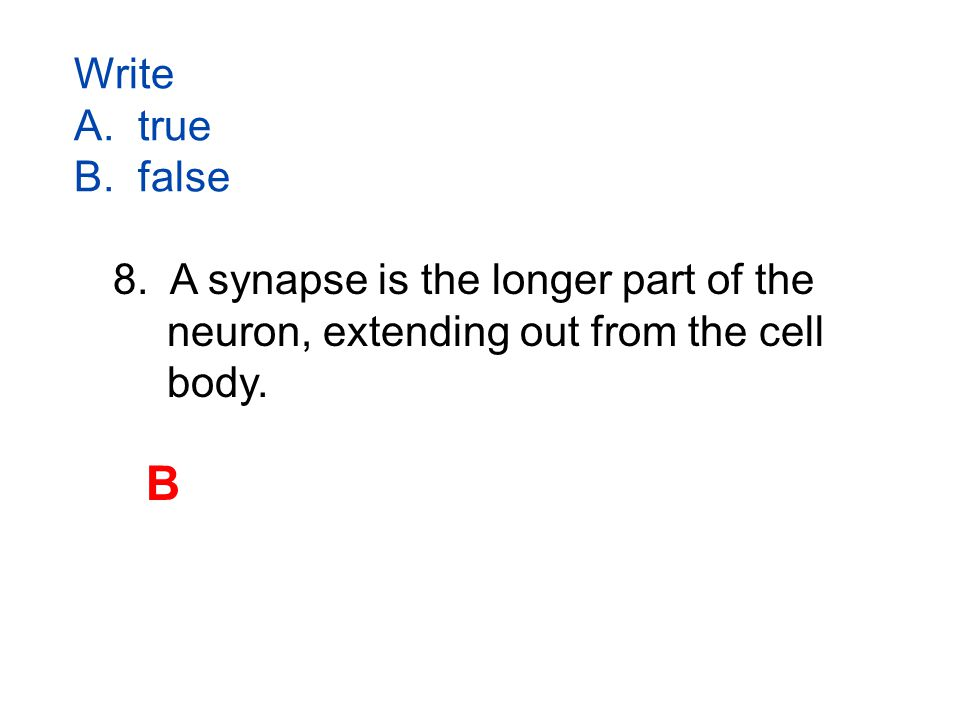 Write A. true B. false 8.