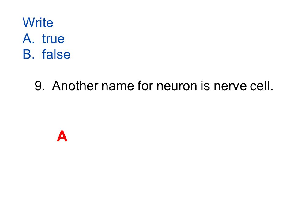 Write A. true B. false 9. Another name for neuron is nerve cell. A