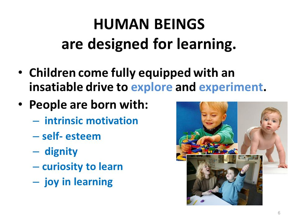 HUMAN BEINGS are designed for learning. Children come fully equipped with an insatiable drive to explore and experiment. People are born with: – intri
