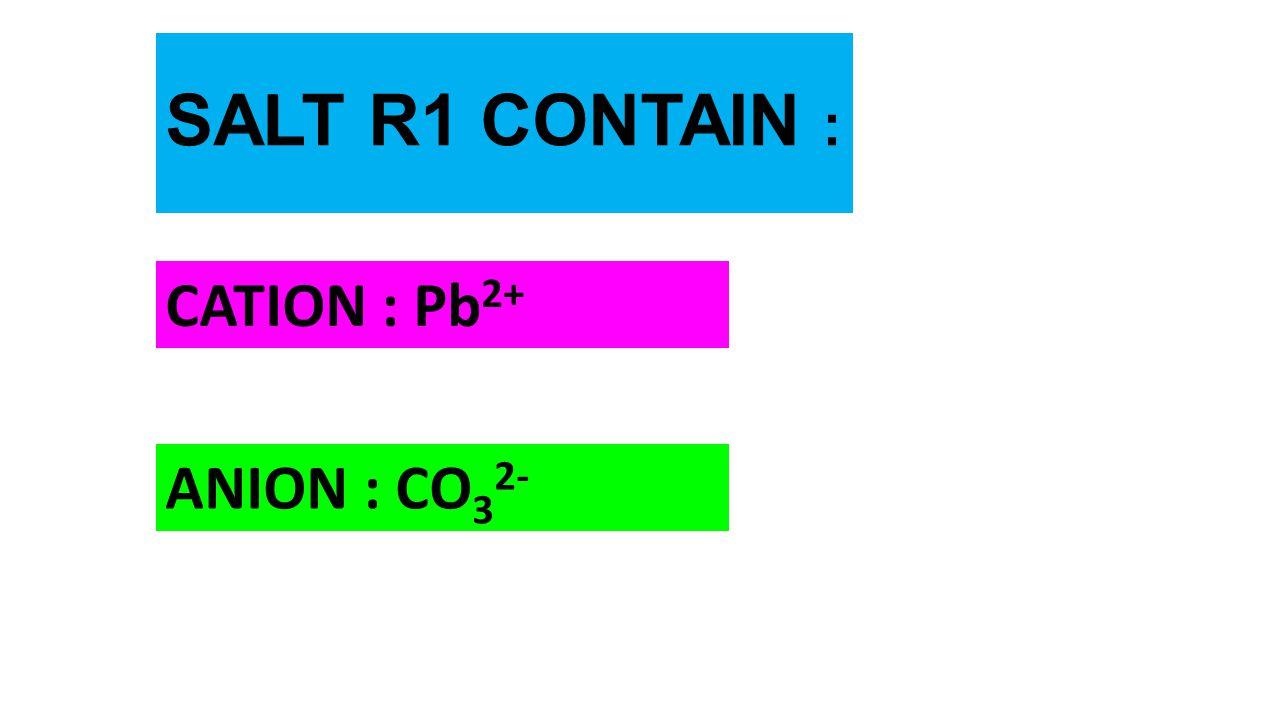 SALT R1 CONTAIN : CATION : Pb 2+ ANION : CO 3 2-