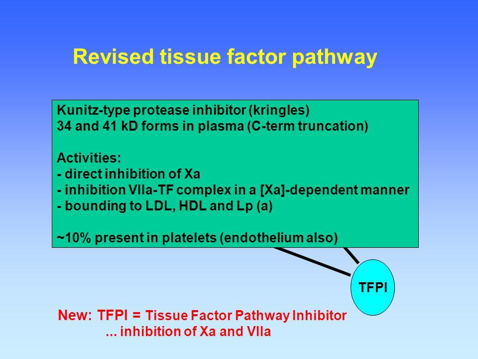 Prothrombin (II) Xa VIIa TF IXa New: TFPI = Tissue Factor Pathway Inhibitor... inhibition of Xa and VIIa IX TFI TFPI Revised tissue factor pathway Kun