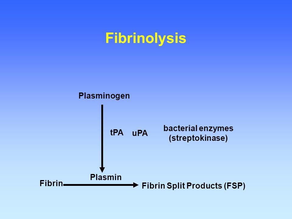 Fibrin Fibrin Split Products (FSP) Plasmin Plasminogen tPA Fibrinolysis uPA bacterial enzymes (streptokinase)
