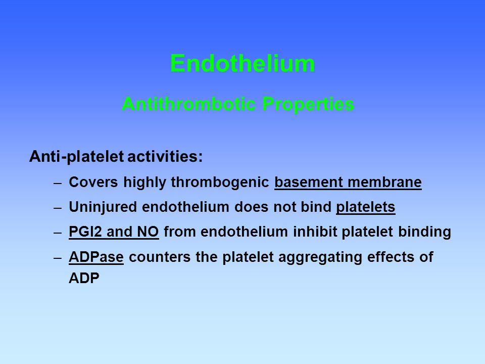 Antithrombotic Properties Anti-platelet activities: –Covers highly thrombogenic basement membrane –Uninjured endothelium does not bind platelets –PGI2