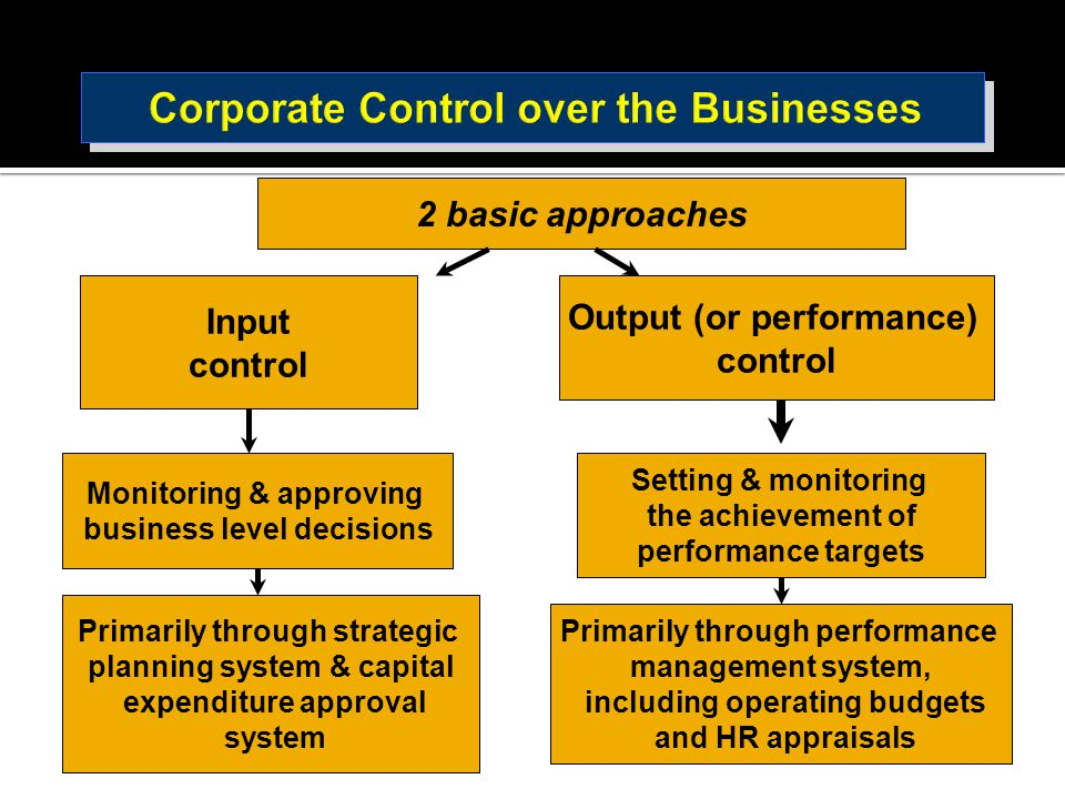 2 basic approaches Input control Monitoring & approving business level decisions Output (or performance) control Setting & monitoring the achievement