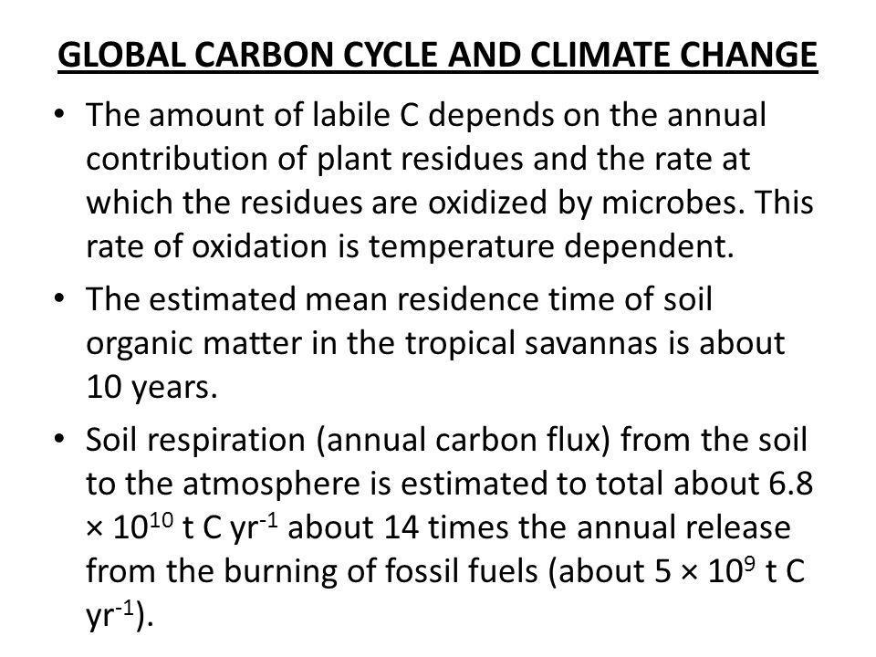 GLOBAL CARBON CYCLE AND CLIMATE CHANGE The amount of labile C depends on the annual contribution of plant residues and the rate at which the residues