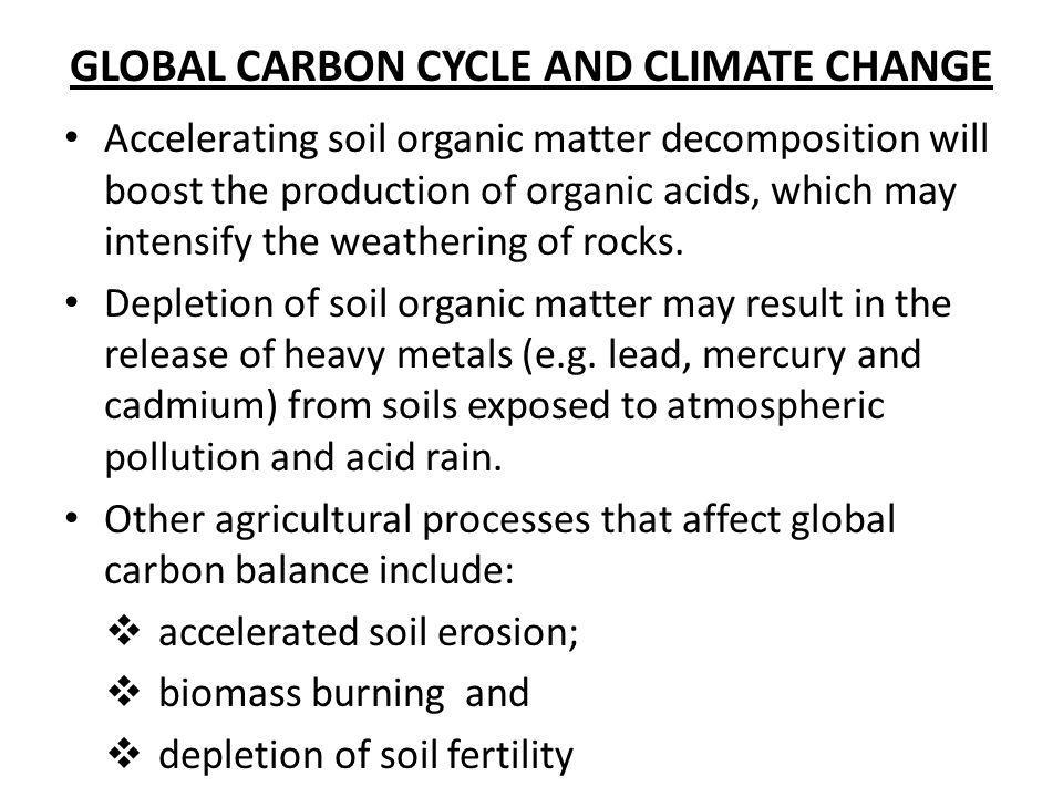GLOBAL CARBON CYCLE AND CLIMATE CHANGE Accelerating soil organic matter decomposition will boost the production of organic acids, which may intensify